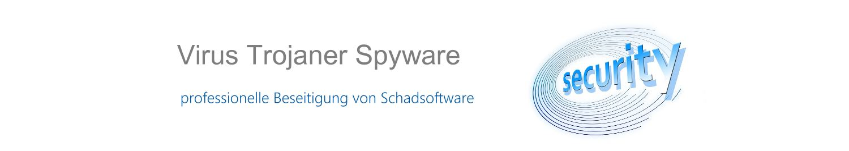 Computer Virus entfernen vom Virus-Profi